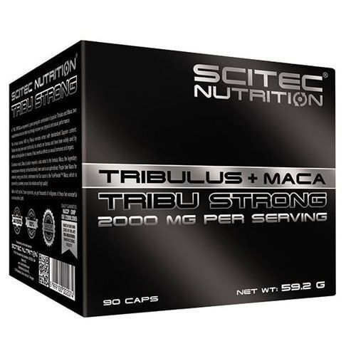 Tribu Strong Scitec